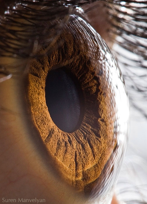 extreme-close-up-of-human-eye-macro-suren-manvelyan-1