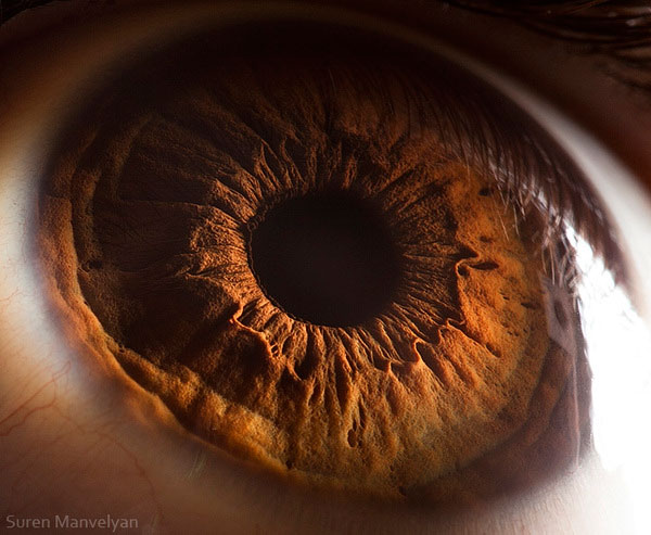 extreme-close-up-of-human-eye-macro-suren-manvelyan-10