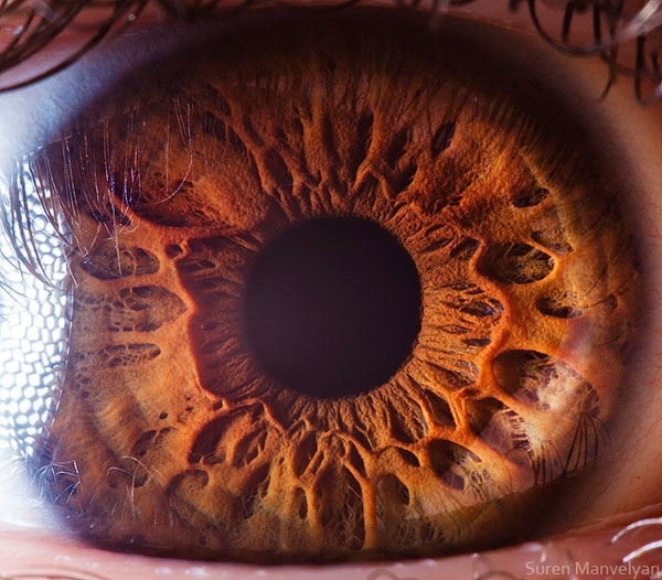 extreme-close-up-of-human-eye-macro-suren-manvelyan-13