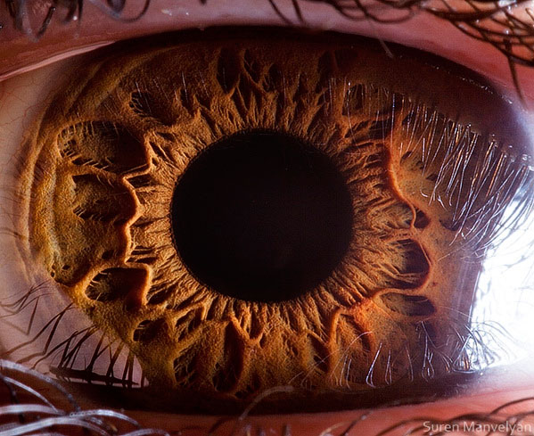 extreme-close-up-of-human-eye-macro-suren-manvelyan-14