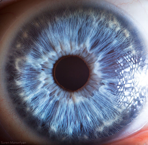 extreme-close-up-of-human-eye-macro-suren-manvelyan-20