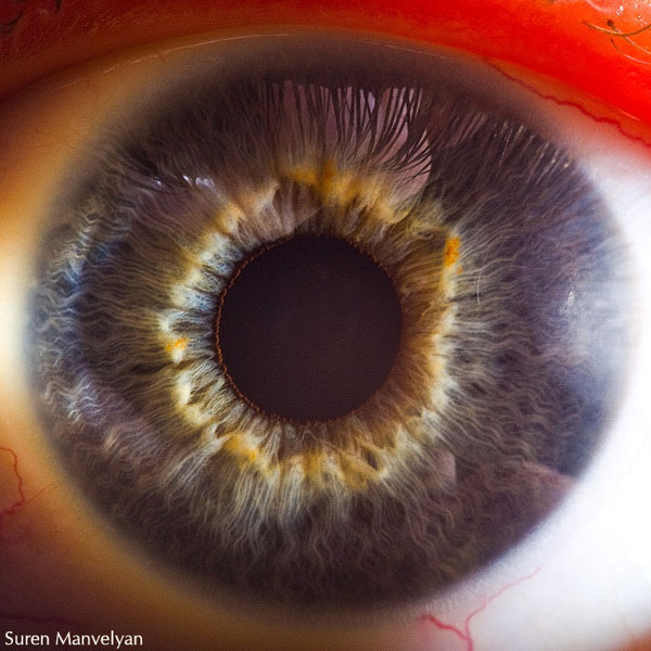 extreme-close-up-of-human-eye-macro-suren-manvelyan-4