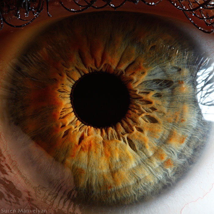 extreme-close-up-of-human-eye-macro-suren-manvelyan-6