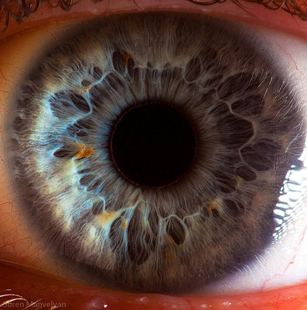 extreme-close-up-of-human-eye-macro-suren-manvelyan-8