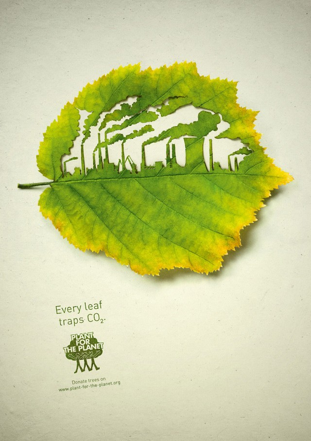 Plant for the Planet: Every leaf traps CO2