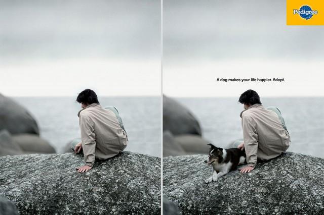 Pedigree: A dog makes your life happier. Adopt.
