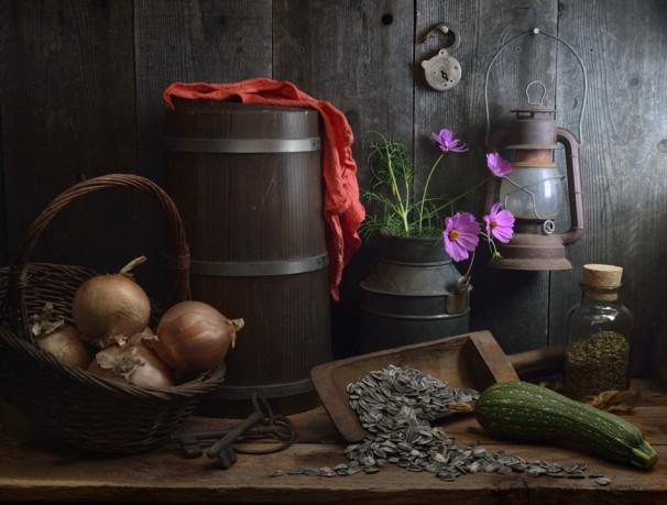At the Farm - Photo © Igor Gavrilkin