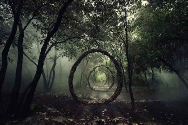 Forest Sculptures - Spencer Byles