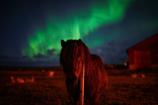 NORWAY-ARCTIC CIRCLE-NORTHERN LIGHT